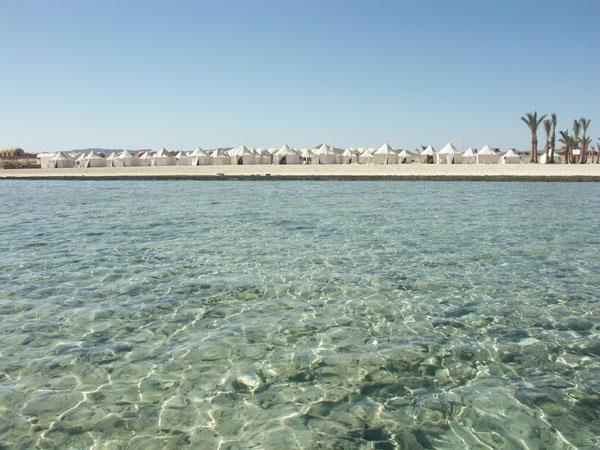séjour egypte eco plongée