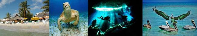 séjour plongée sous-marine mexique