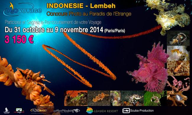 voyage plongée lembeh2014