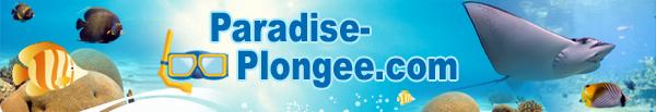 Paradise Plongée