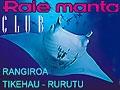Raie Manta Club - Centres de plongée en Polynésie