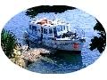 Ecole de plongée de Plougasnou - Centre plongée bretagne