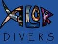 Alor Divers - Centre de plongée archipel d'Alor