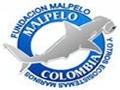 Fondation Malpelo - Protection espèces marines en Colombie
