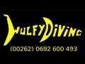 Wulfy Diving - Centre de plongée Réunion