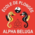Alpha Beluga - Centre de plongée Port Frejus